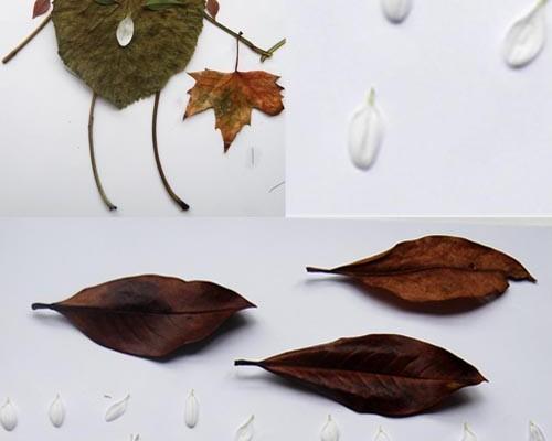DIY: con unas hojas