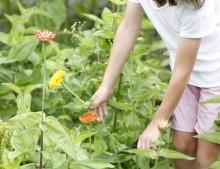Holanda con niños: hacer tu propio ramo de flores