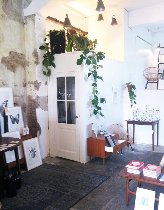 Nuestra Tienda Favorita En Haarlem Portrait Escarabajos