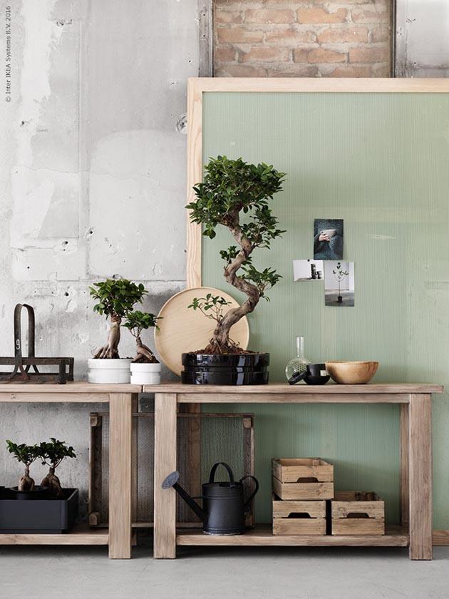 Ikea_ginseng_inspiration_1