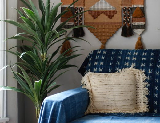 PlantOPedia-Dracena-Indigo-Chair-1