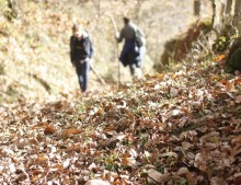 Asturias: ruta de los molinos en Bimenes