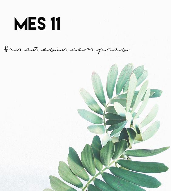 mes11