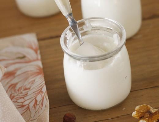 yogur en yogurtera