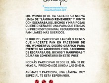 Sorteo Mr. Wonderful