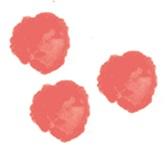 logotipo_puntitos_ebym-11
