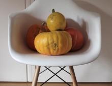 Nuestra decoración de Halloween