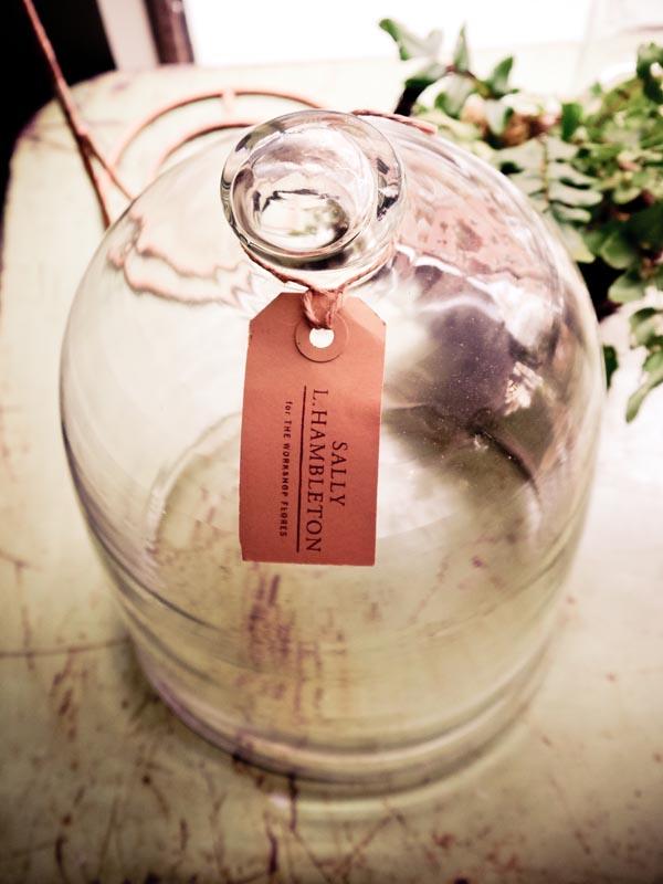 cristal sally hambleton