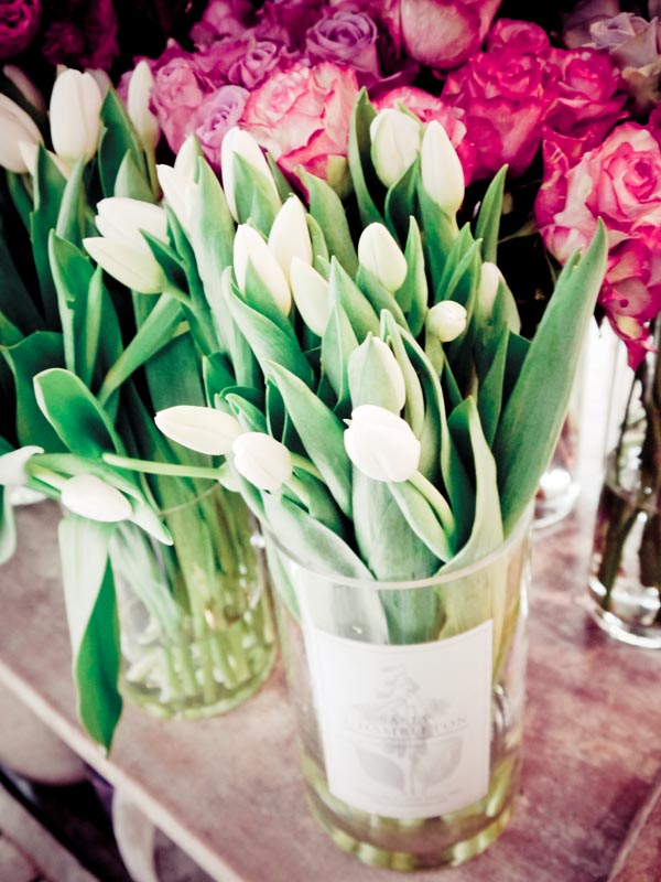 flores sally hambleton