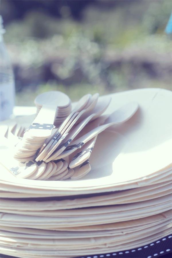 platos2