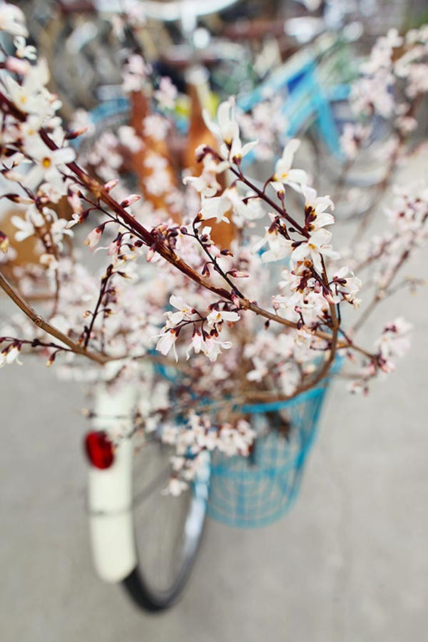 linus-bikes-florals-designlovefest06
