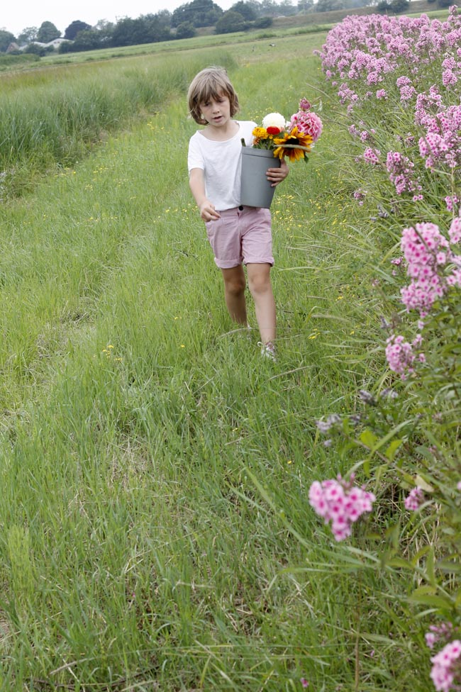 recoger flores5