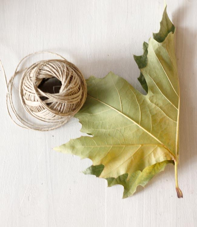 corona con hojas de otoño