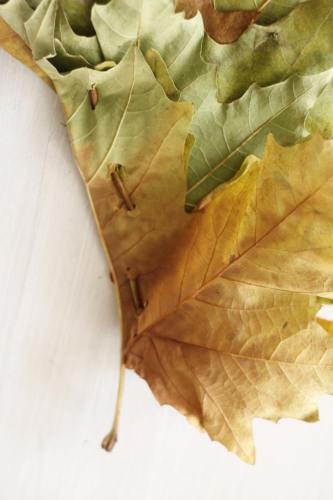 manualidades con hojas niños