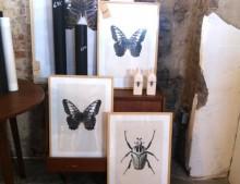 Nuestra tienda favorita en Haarlem: Portrait