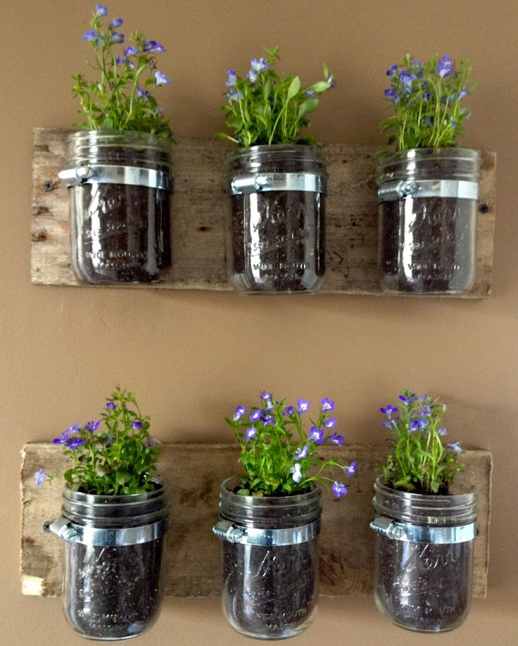 30-Awesome-Indoor-Garden-Planting-Projects-To-Start-In-The-New-Year-24