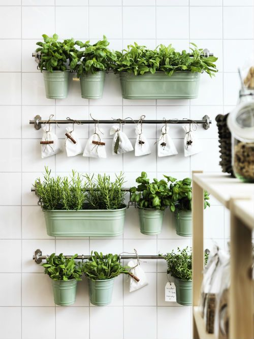 30-Awesome-Indoor-Garden-Planting-Projects-To-Start-In-The-New-Year-30