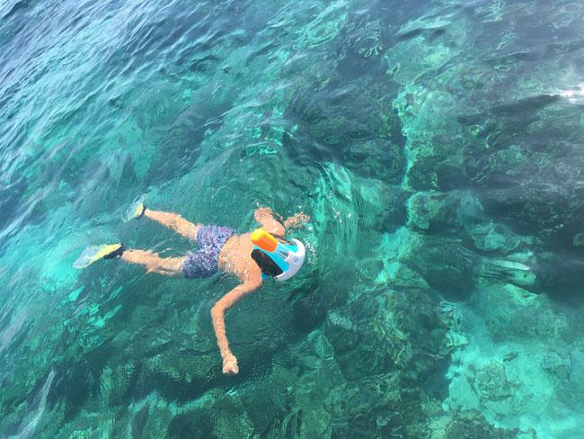 snorkel3