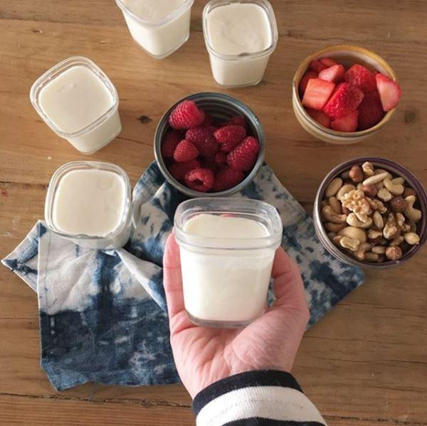 yogur en yogurtera casero